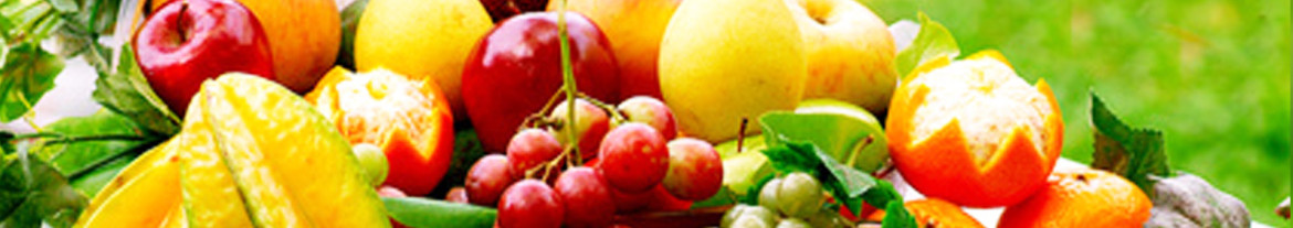 nutrition-banner